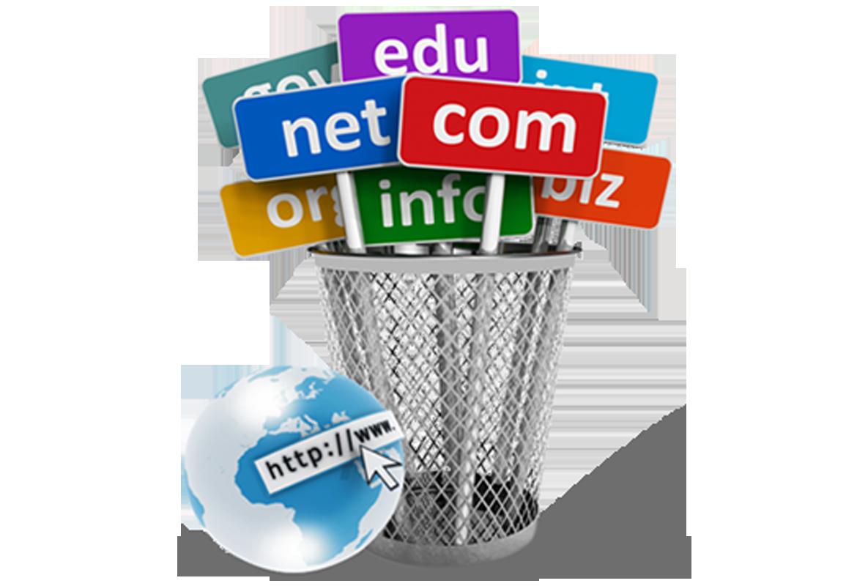 Κατοχύρωση Domain.com .net .org .biz